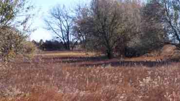 cherry-creek-state-park-campground-aurora-co-12