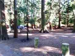 city-anacortes-washington-park-campground-06