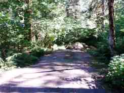 colonial-creek-campground-north-cascade-national-park-08