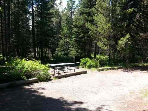 colter-bay-campground-rv-park-grand-teton-national-park-4