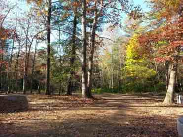 Cumberland Mountain State Park in Crossville Tennessee Roadway in Loop A
