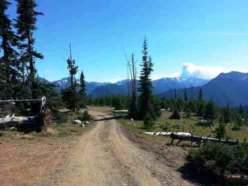 deer-park-campground-olympic-national-park-10
