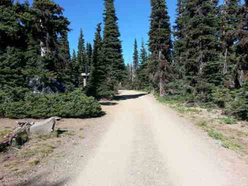 deer-park-campground-olympic-national-park-13