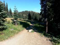 deer-park-campground-olympic-national-park-18
