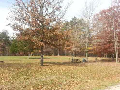 Deer Run RV Resort in Crossville Tennessee Grass Sites