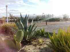 desert-pools-rv-resort-desert-hot-springs-06