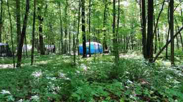 devils-lake-state-park-campgrounds-28