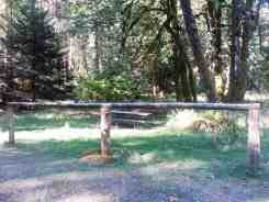dosewallips-campground-olympic-national-park-03