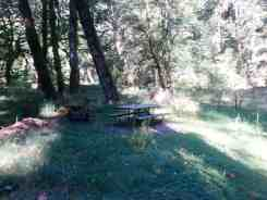 dosewallips-campground-olympic-national-park-06