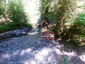 dosewallips-campground-olympic-national-park-16