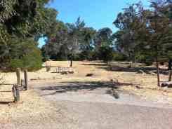 el-chorro-regional-park-campground-6