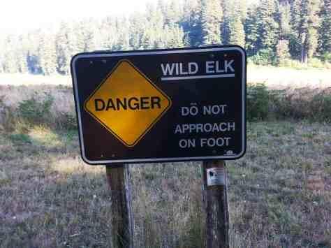 elk-prairie-campground-16