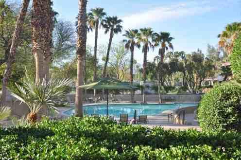 emerald-desert-rv-resort-pool