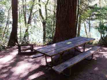 fairholme-campground-olympic-national-park-05