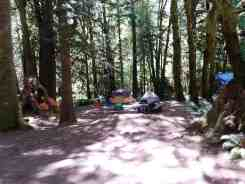 fairholme-campground-olympic-national-park-14