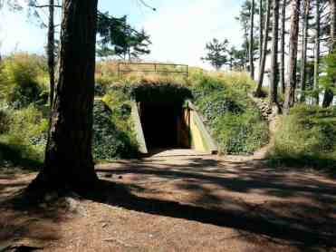 fort-ebey-state-park-campground-05