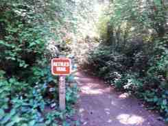 fort-ebey-state-park-campground-11