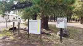 fort-tuthill-county-park-campground-flagstaff-04