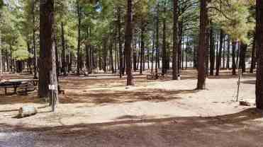 fort-tuthill-county-park-campground-flagstaff-10