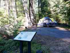 heart-o-the-hills-campground-olympic-national-park-09