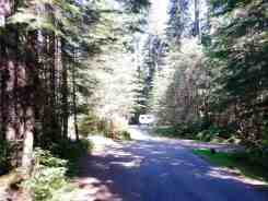 heart-o-the-hills-campground-olympic-national-park-10