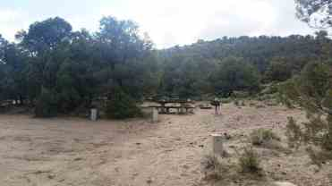hickinson-petroglyphs-blm-campground-austin-nv-08