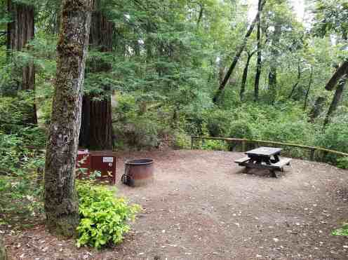 hidden-springs-campground-humboldt-redwoods-state-park-12