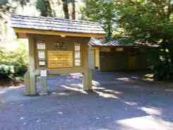 hoh-campground-olympic-national-park-07