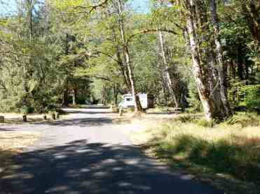 hoh-campground-olympic-national-park-14