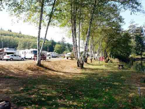hoquiam-river-rv-park-wa-08