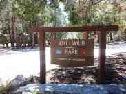 idyllwild-county-park-campground-1