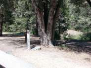 idyllwild-county-park-campground-2