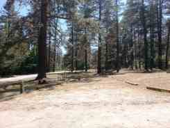 idyllwild-county-park-campground-5