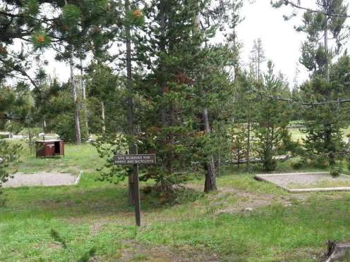 indian-creek-campground-yellowstone-national-park-bike-hike