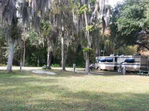 Indian Forest Campground in Saint Augustine Florida Trees