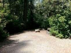 jedediah-smith-campground-04