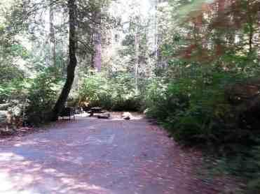 jedediah-smith-campground-14