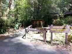 jedediah-smith-campground-16