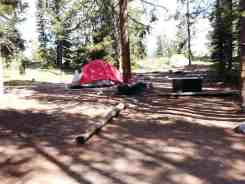 jenny-lake-campground-grand-teton-np-21