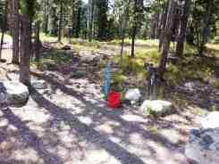 jenny-lake-campground-grand-teton-np-24