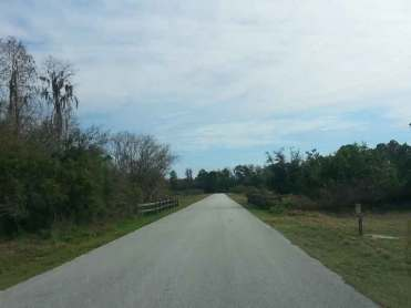 Lake Louisa State Park in Clermont Florida Entrance Road