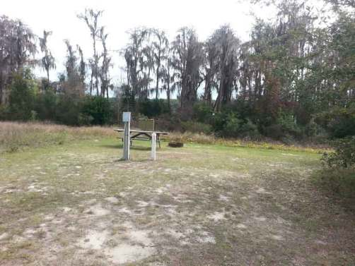 Lake Louisa State Park in Clermont Florida Tent Sites