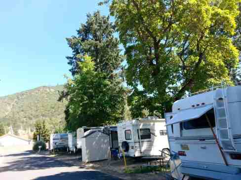 lazy-acres-on-the-river-rv-park-4