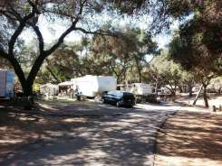 lilac-oaks-campground-california-15