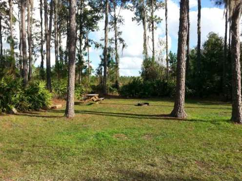 little-manatee-river-state-park-campground-wimauma-florida-horse-camp2