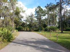 little-manatee-river-state-park-campground-wimauma-florida-raodway