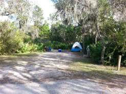 little-manatee-river-state-park-campground-wimauma-florida-tentsite