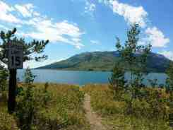 lizard-creek-campground-grand-teton-national-park-11