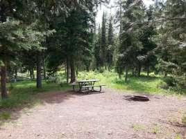lizard-creek-campground-grand-teton-national-park-2
