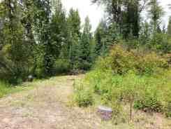 logging-creek-campground-glacier-national-park-11
